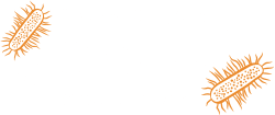 Zoo In You logo