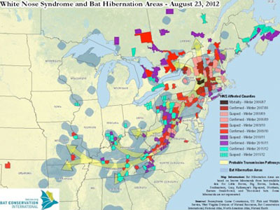 White Nose Syndrome Map