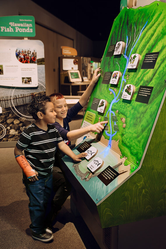 Guests explore stream ecology at the 'Love of the Land' interactive