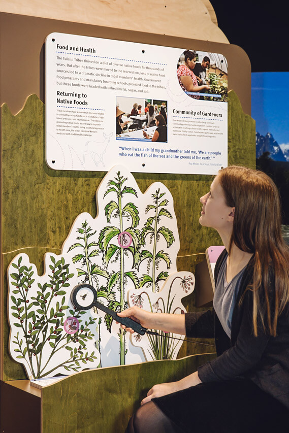 Visitor with 'Food: Medicine of the Land' display