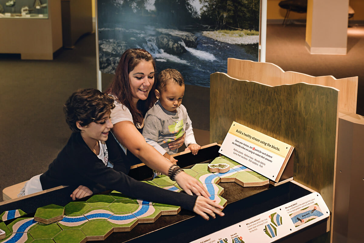Group of visitors at 'Healthy Streams, Returning Salmon' interactive