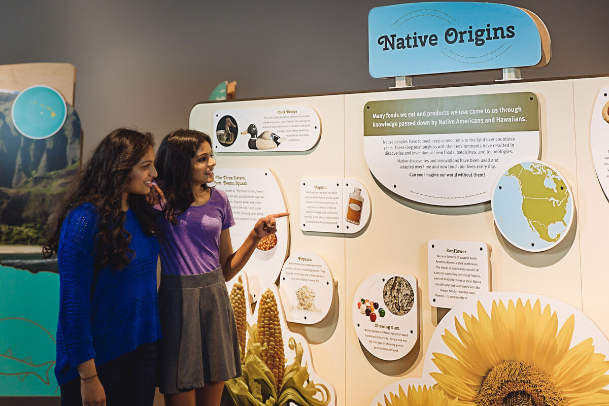 Guests in front of 'Native Origins' information panel