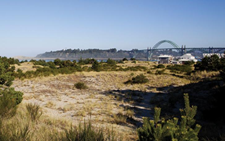 View of Yaquina Bay Bridge from coast in Newport