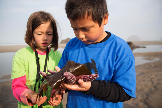 Students examining starfish at the Coastal Discovery Center