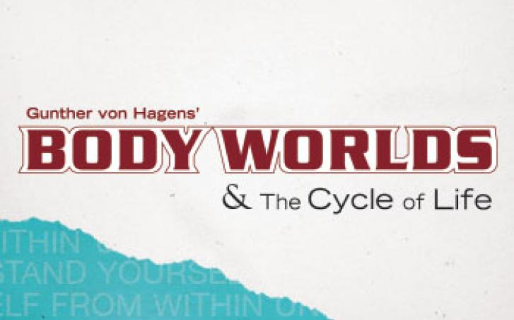 BODY WORLDS Member Preview Night