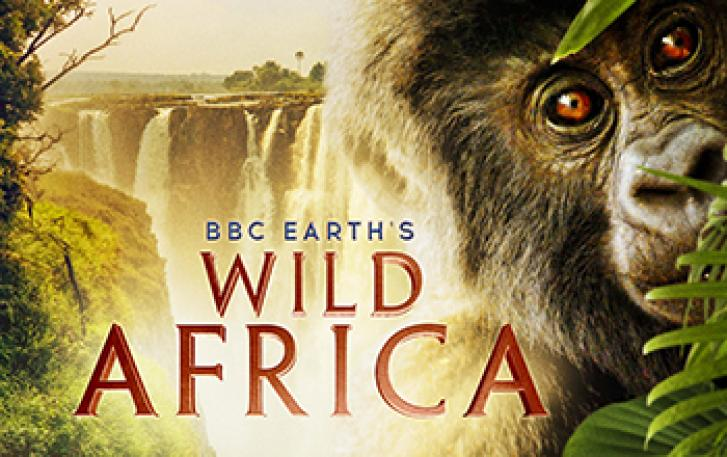 Wild Africa poster image
