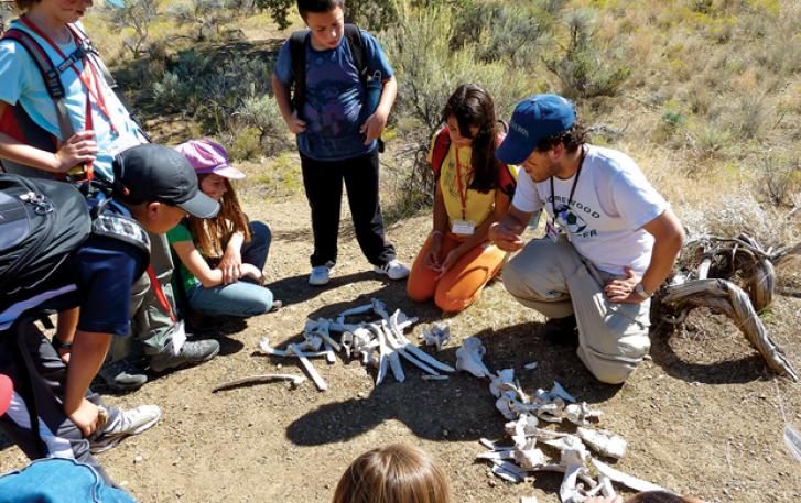 Students examining animal skeleton on hiking trail