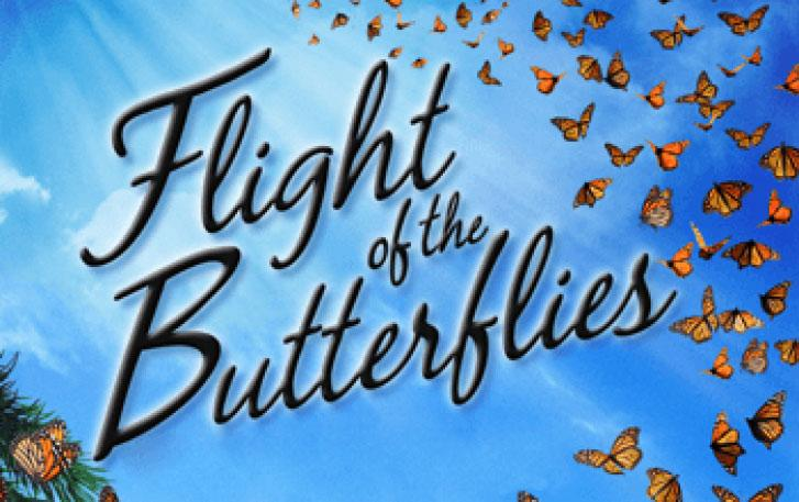 Flight of the Butterflies poster image