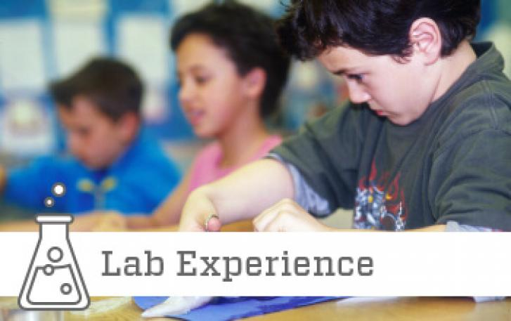 Squid dissection lab experience image