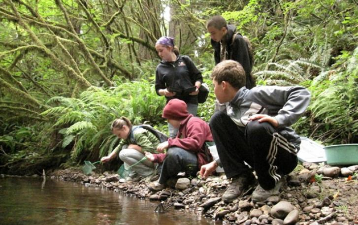 Hikers on riverbank in Oregon coastal rainforest